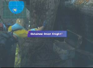 Lulu s Onion Knight
